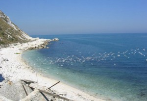 spiaggia_gabbiani
